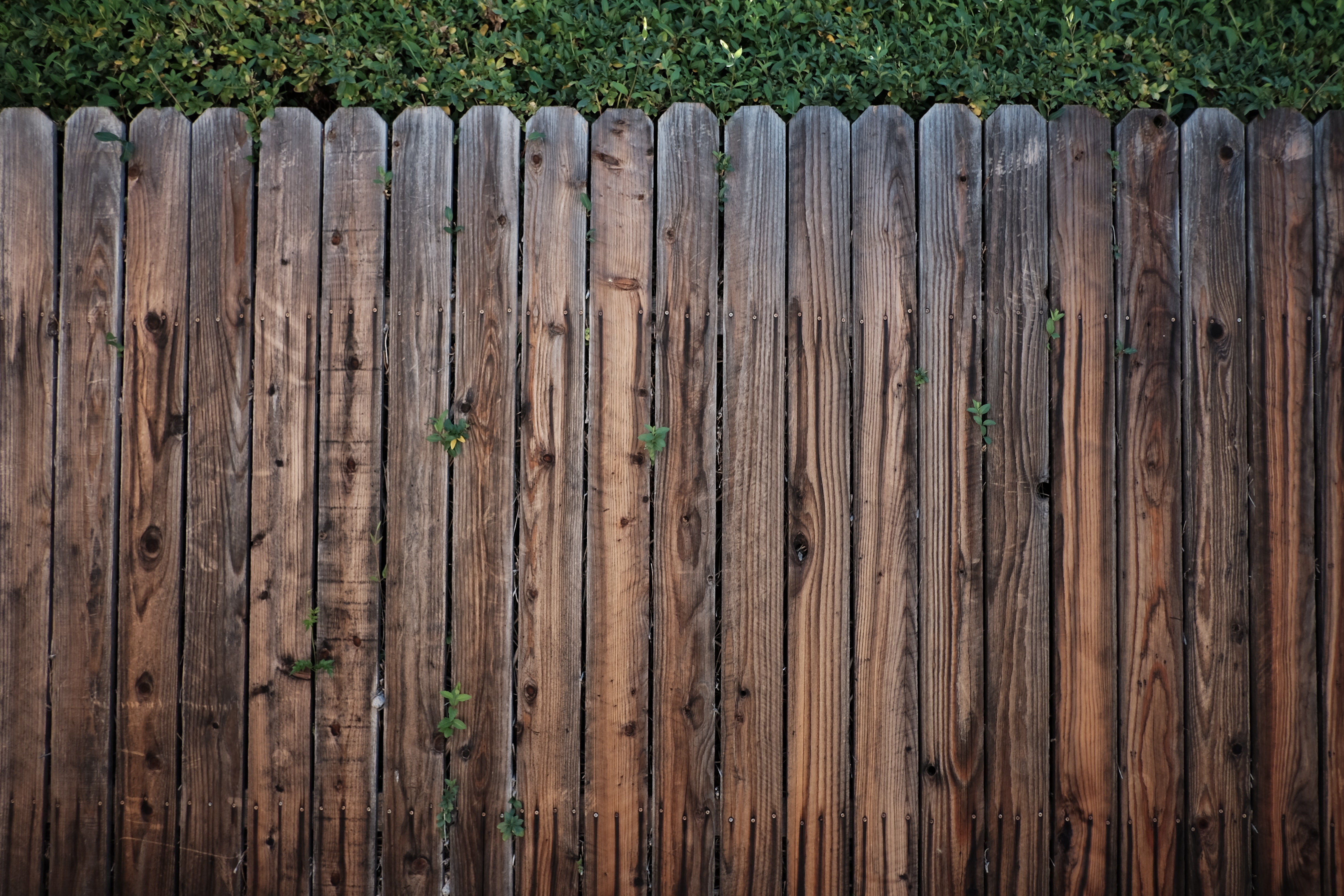 Does Fencing Really Add Value to Your Home?